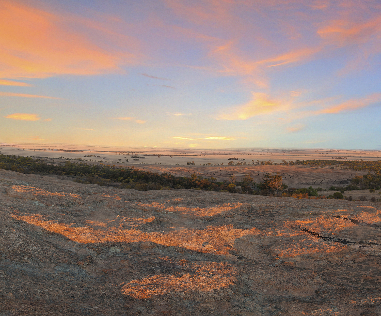 Wheatbelt landscape