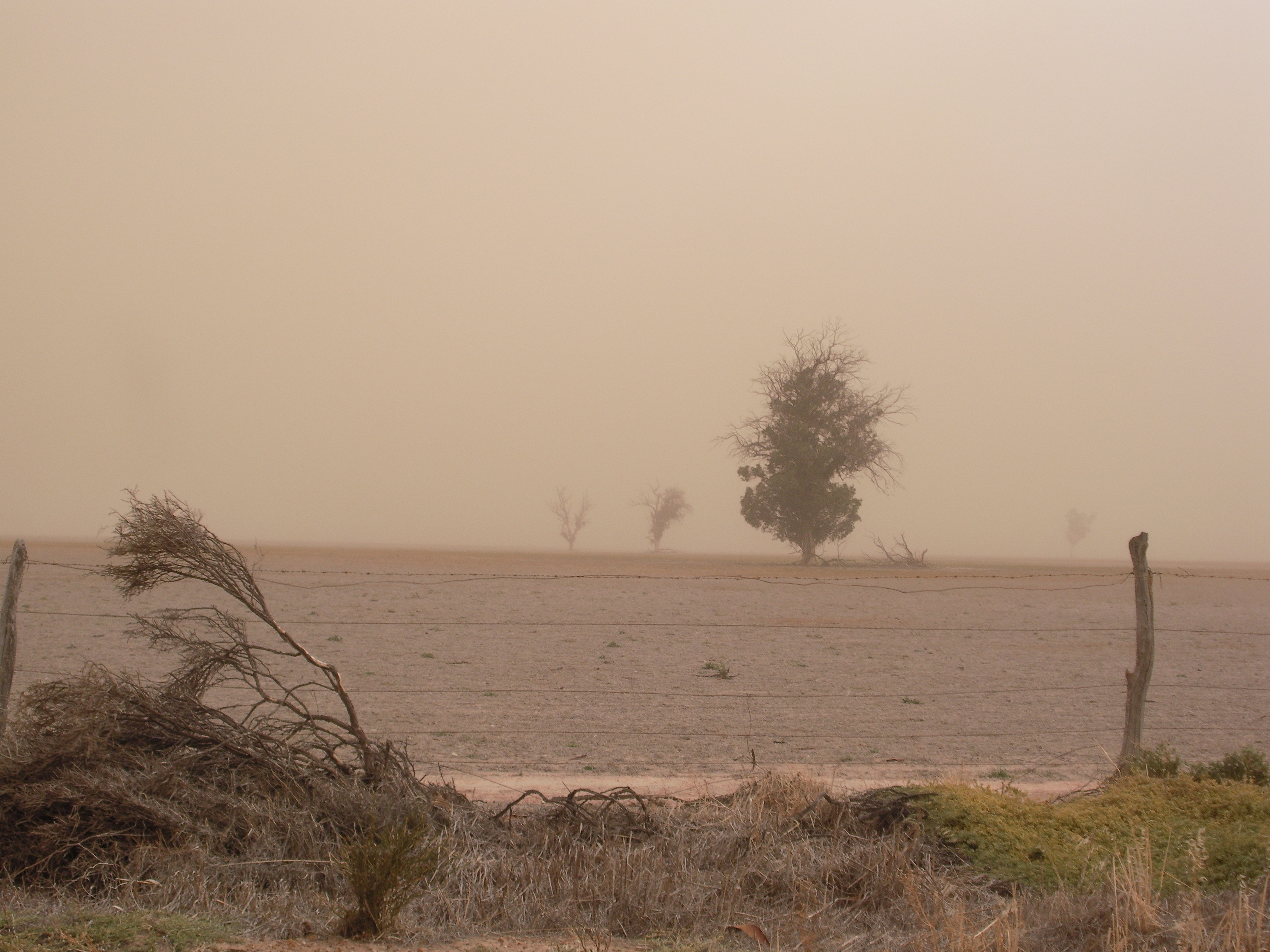 Results of high winds over Wheatbelt