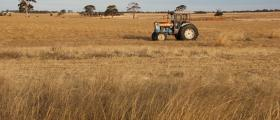 'Tractor in paddock' - Grain Stainer (32 yrs)