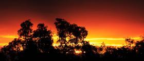 'Sun fire' - by Brooke Maitland-Smith (15 yrs)