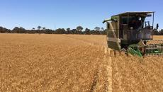 Wheatbelt Sustainable Agriculture trial sites on show