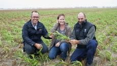 Summer rain ideal for summer crop trial